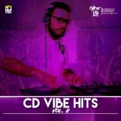 Vibe Hits #08