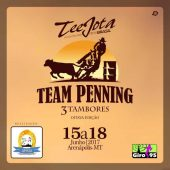 Team Penning 2017