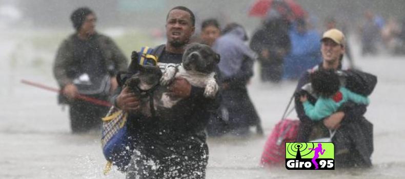 Artistas fazem corrente de doações para atingidos por furacão nos EUA