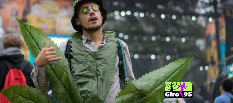 Festival americano ganha liberação para uso e venda de maconha